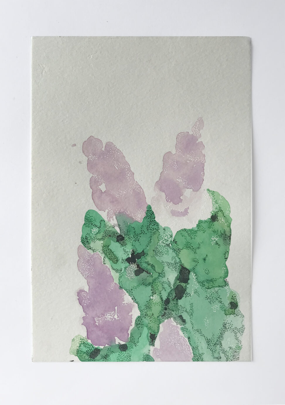 Painting of lilacs on a white background.